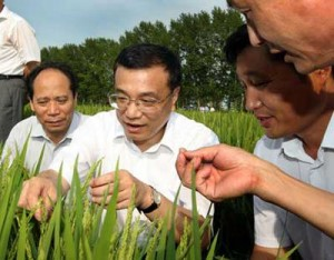 Looking over the rice fields, Vice Premier Li Keqiang - President Hu's Protegee