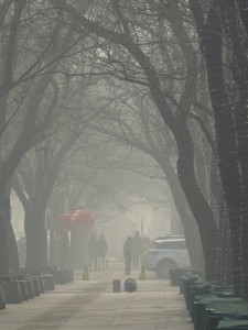 Photo from Beijing Air-pocolpyse, Jan. 2013
