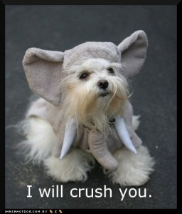 i_will_crush_you_loldog_elephant_ears_pajama_pals_pet_costume